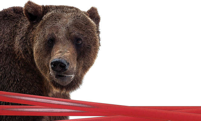 Chasing the bear – Sanctions bite on Russia's legal market